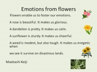 Emotions from flowers